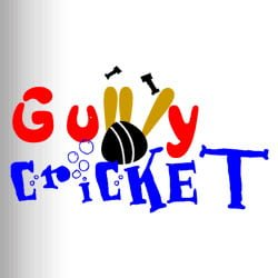 gully-crickt-img